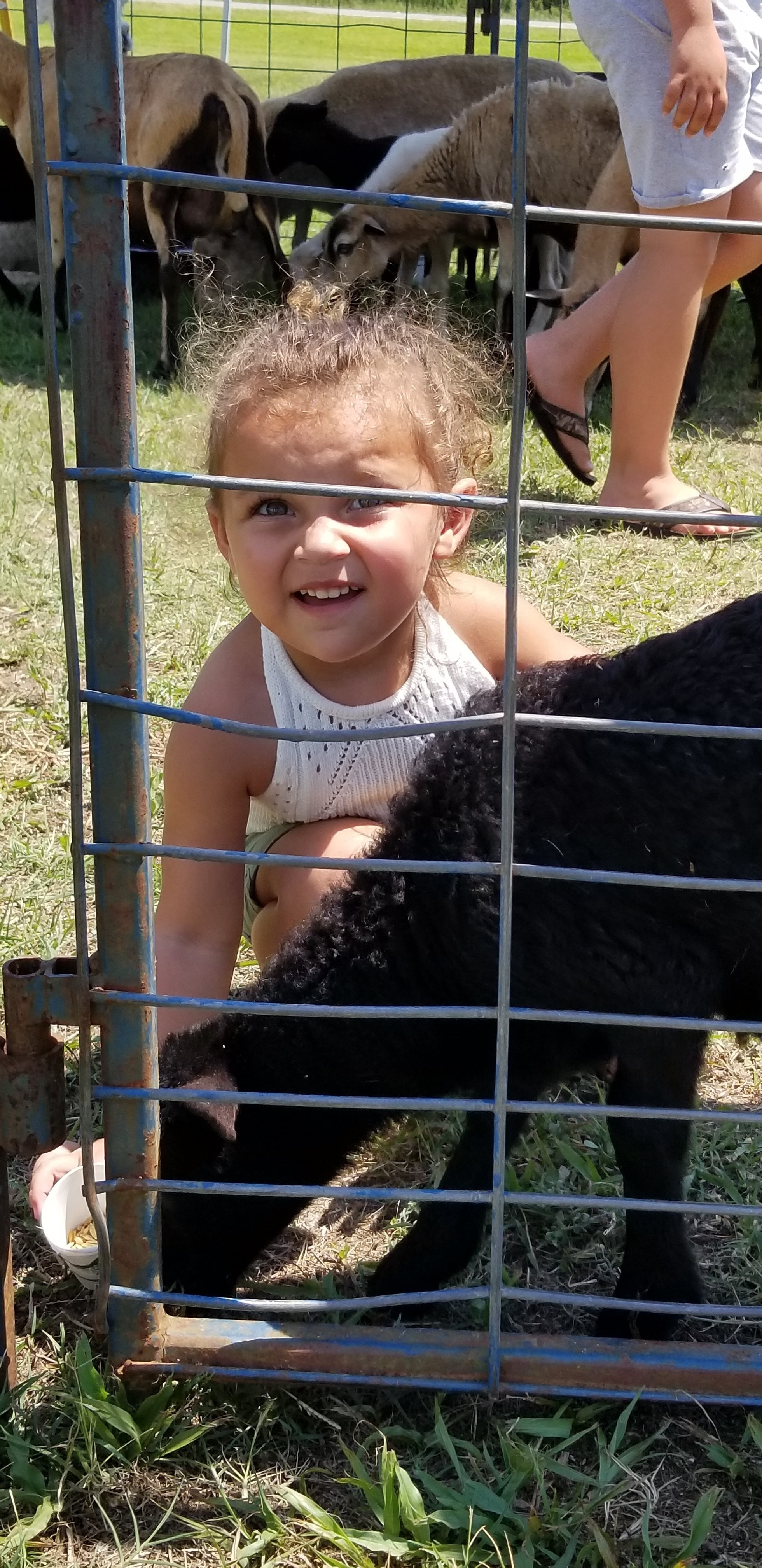 PZ_girl toddler with goat