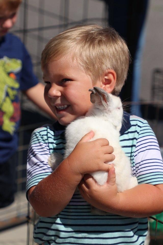 Webpage_GL_ Boy with Bunny